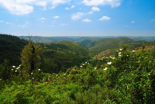 Cape Sao Vincent